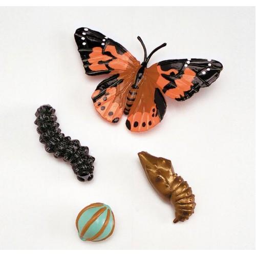 Годишен цикъл на развитие при пеперудите