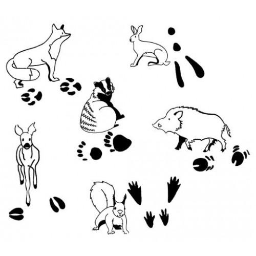 Печати на животни и техните следи