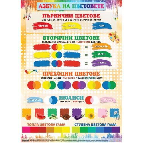 Табло - Азбука на цветовете - 100х70 см